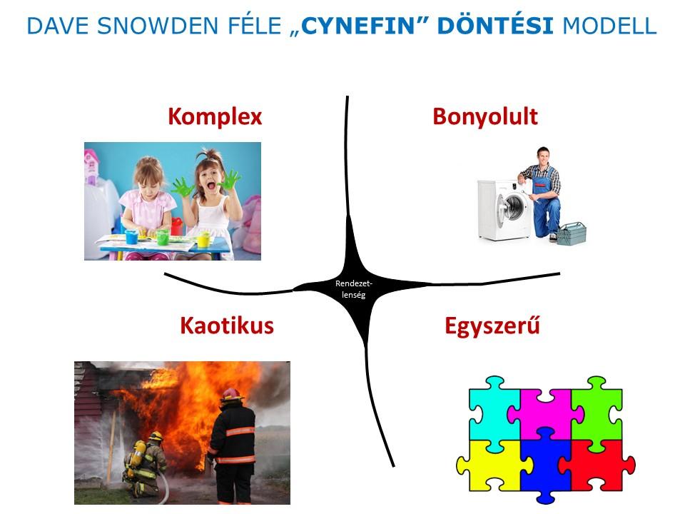 dave-snowden-dontesi-modell